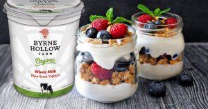 BHF greek yogurt 300x158 - BHF greek yogurt