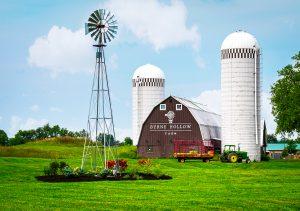 BHF Barn Retouch  6887 1 300x211 - BHF_Barn_Retouch__6887 (1)