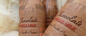 Woven basket bottles closeup2 300x128 - Woven basket_bottles closeup2
