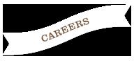 careers ribbon - careers-ribbon