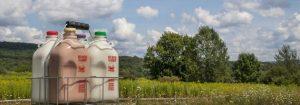 fresh dairy header image 300x105 - fresh-dairy-header-image