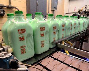 mint milk in new york half gallon glass bottle by byrne dairy 300x239 - mint-milk-in-new-york-half-gallon-glass-bottle-by-byrne-dairy