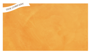 our company orange box 300x175 - our-company-orange-box