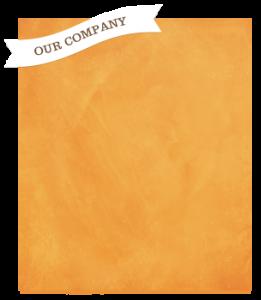 our company sidebar 261x300 - our-company-sidebar